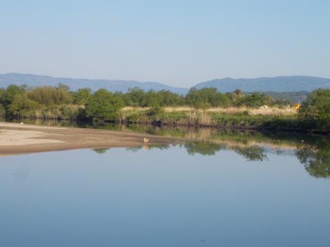 夏井川の風景
