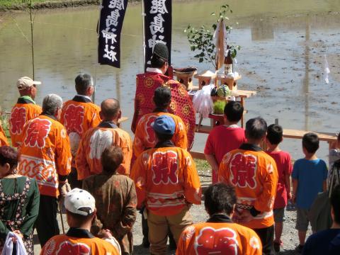 立鉾神社お田植え祭り 1