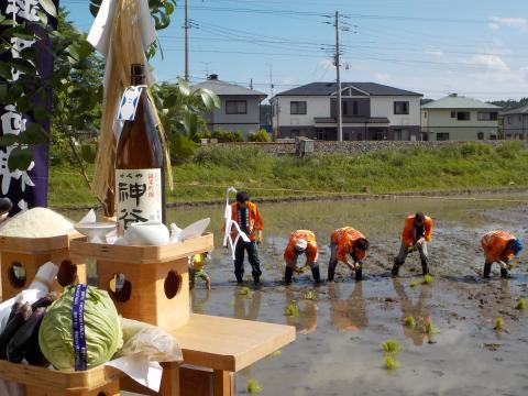 立鉾神社お田植え祭り 3