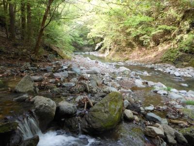N_キャンプ川
