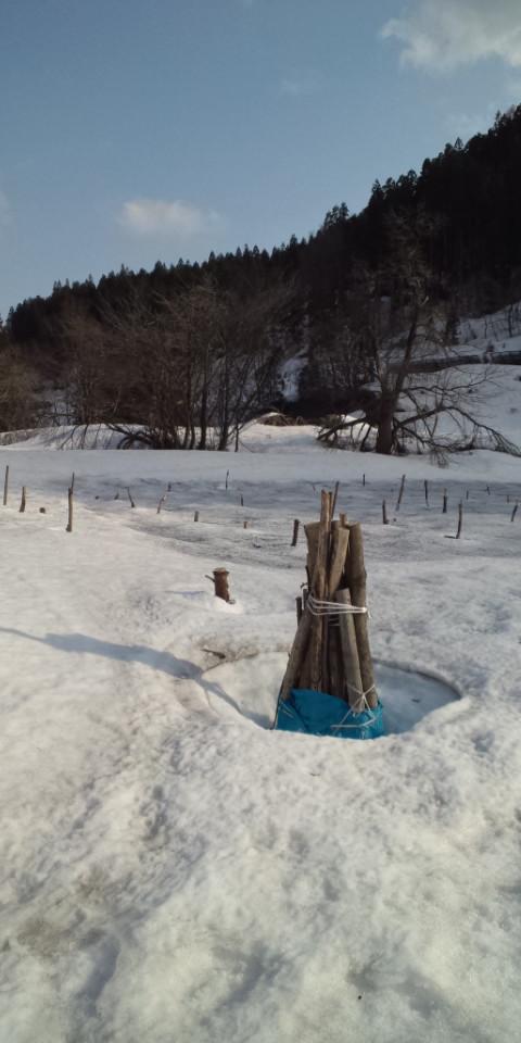 山内の畑はまだ雪たっぷり