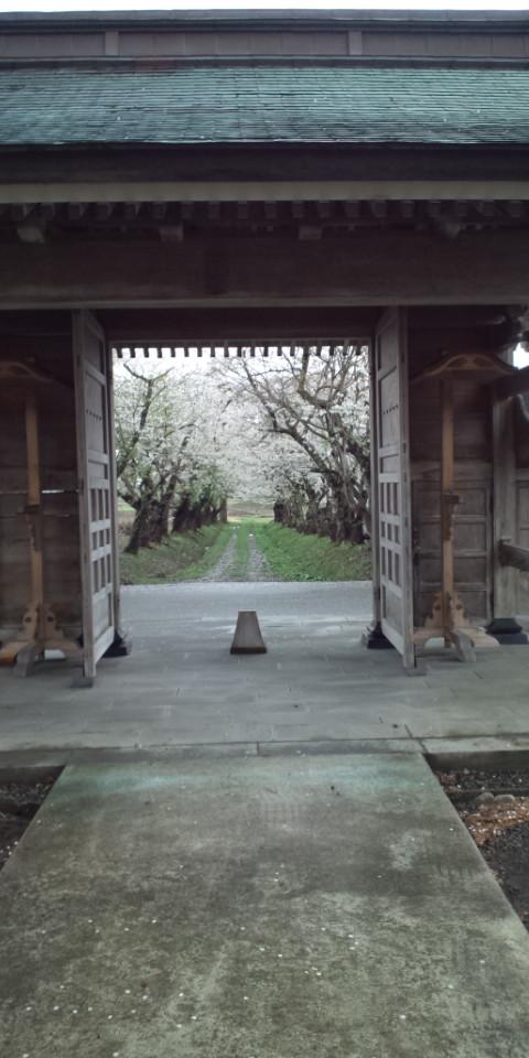 正伝寺の山門から