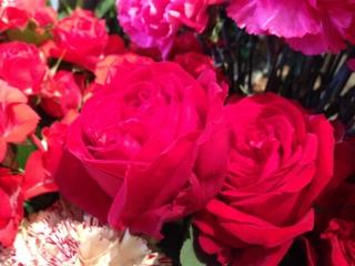 5月8日生花バラ