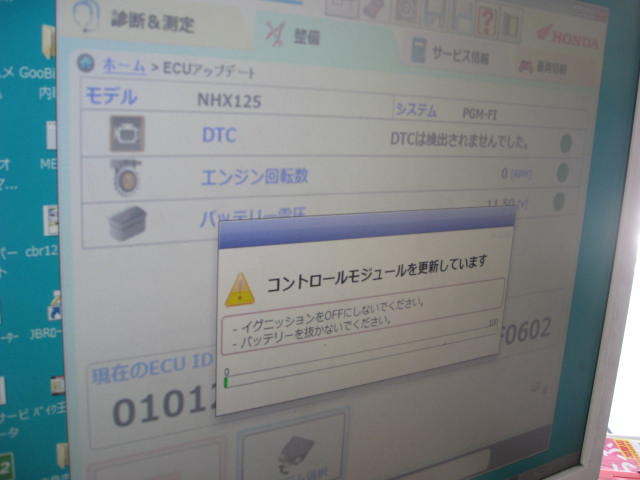 IMG_8790.jpg