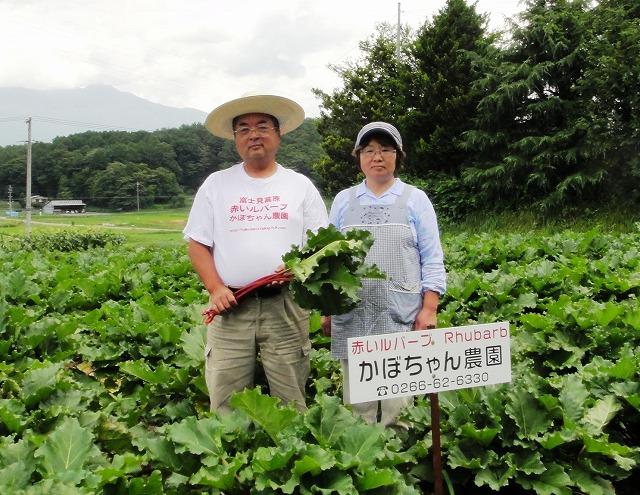 かぼちゃん農園夫婦 (2)