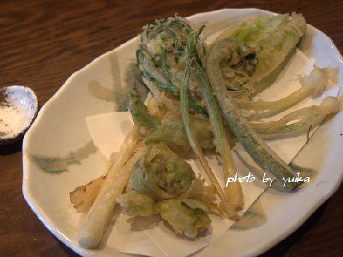 山菜323-2