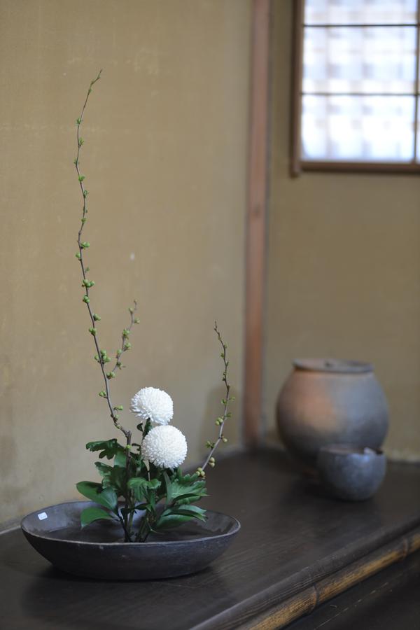 Ohashi-Ichinose-c_20130416.jpg