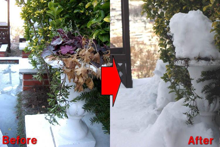 記録的な大雪-3
