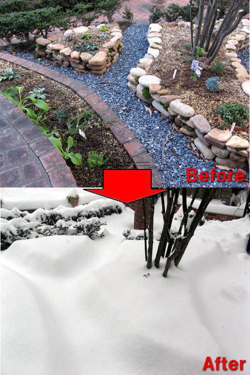 記録的な大雪-5