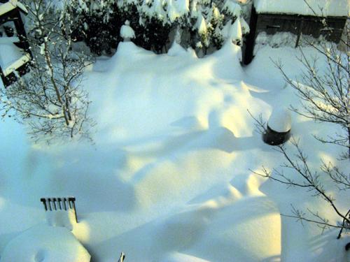 夜に降り続く雪-4