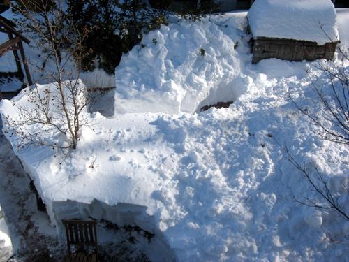 ガーデン復旧作業-31