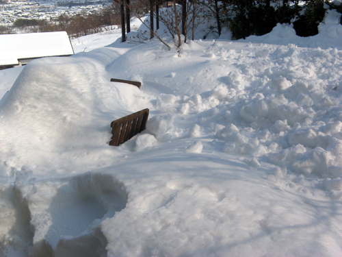 ガーデン復旧作業-4