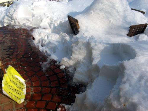 ガーデン復旧作業-5
