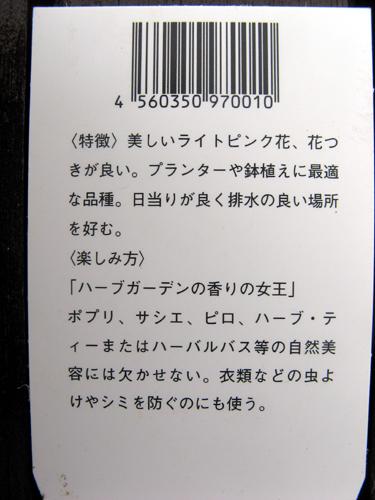 20140508-3.jpg