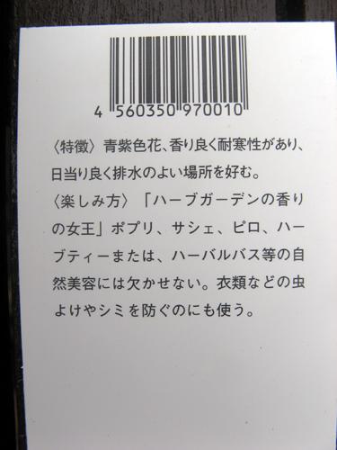 20140508-7.jpg