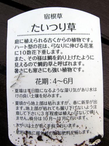 20140517-3.jpg