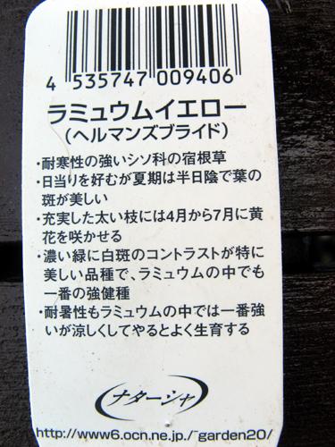 20140608-4.jpg