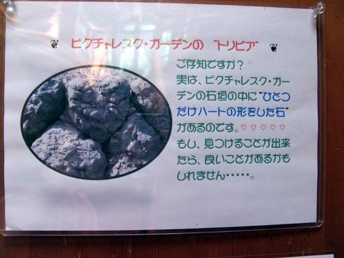 20140708-7.jpg