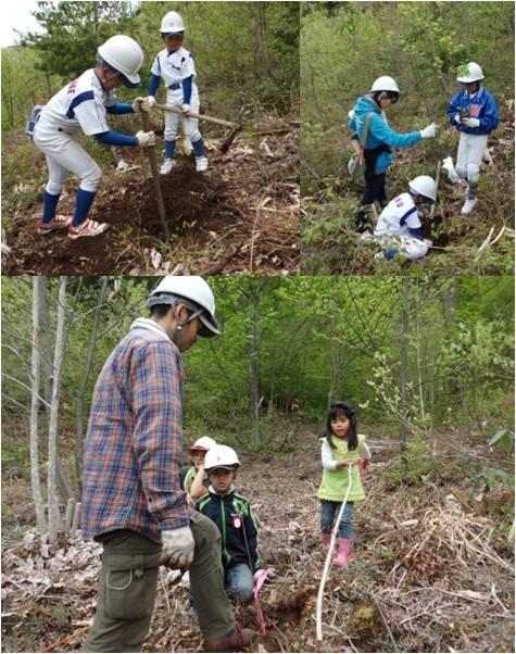 バットの森1・植樹