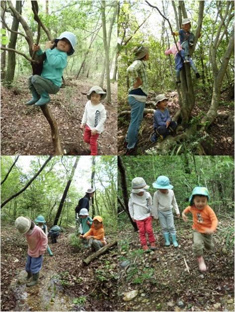 森わら1・男の子の遊び