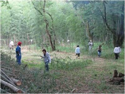 竹文化・作業