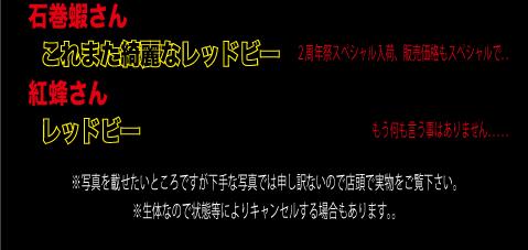 2th-3_12.jpg