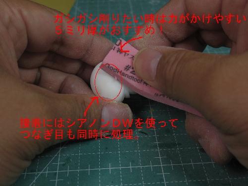 IMGP2506.jpg