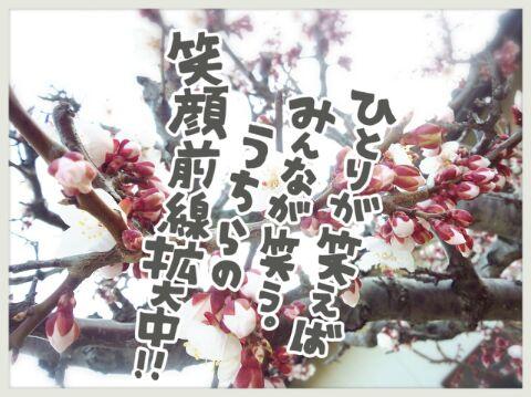20140409190058461.jpg