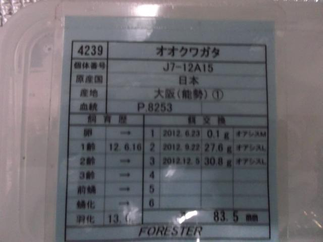 DSCF3749[1]_convert_20140331192630