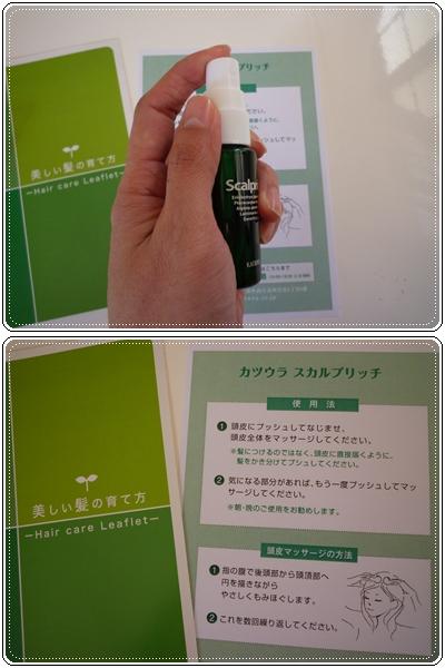 P1090359-vert.jpg