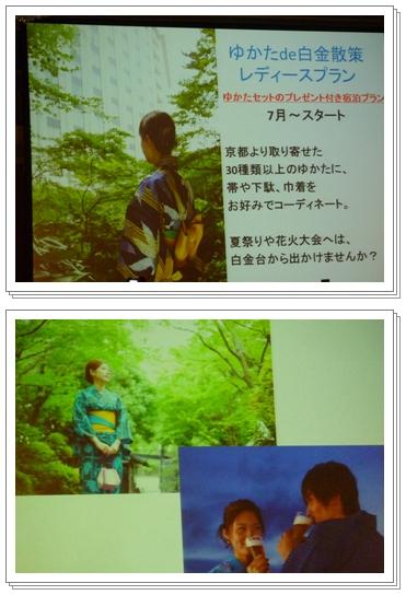 P1110148-vert.jpg