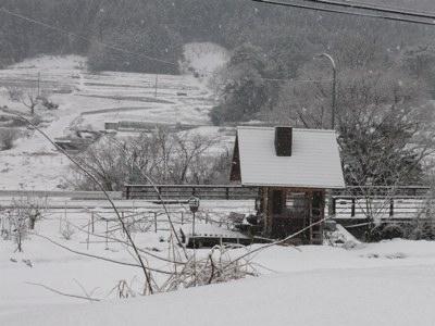 雪ちらり260221
