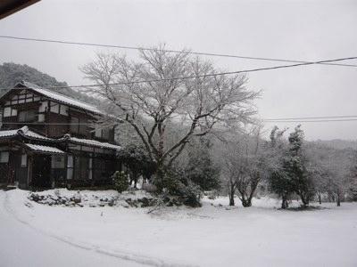 雪 260221
