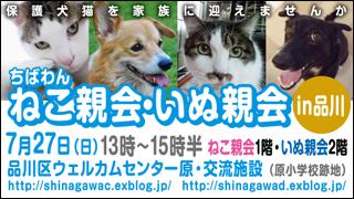 shinagawa46_320x180.jpg