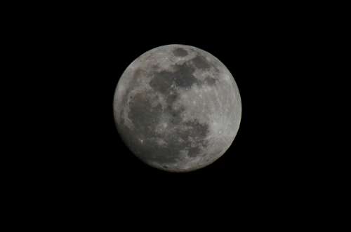 IMGP1856満月