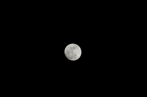 IMGP1853満月