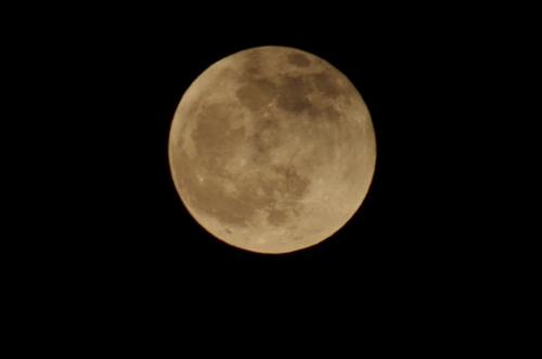 moonIMGP3551.jpg
