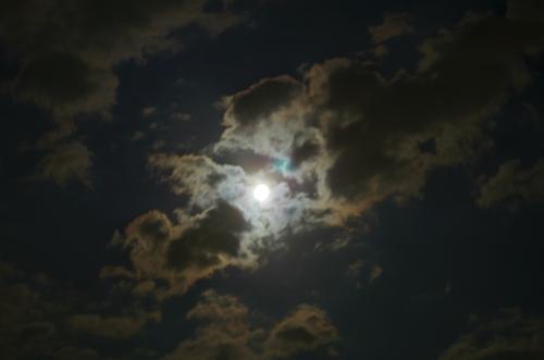 moonIMGP3571.jpg