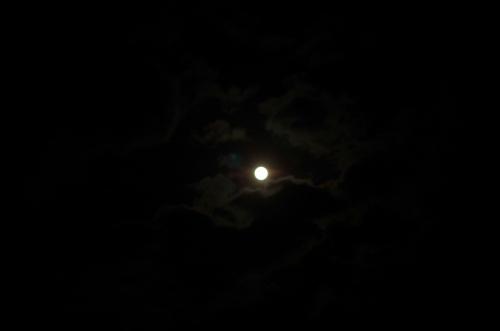 moonIMGP3578.jpg