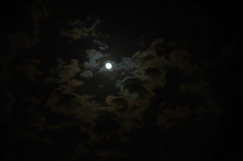 moonIMGP3588.jpg