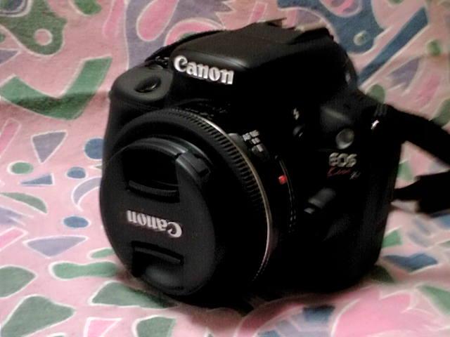 Canon EOS X4 + レンズEF40mm f/2.8 STM