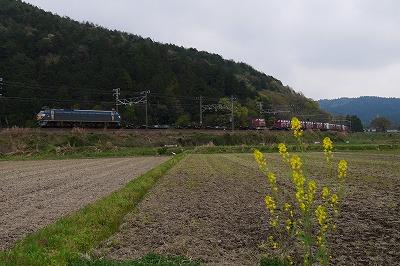 s-P1000096.jpg
