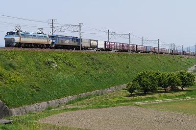 s-P1000147.jpg