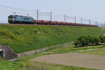 s-P1000150.jpg