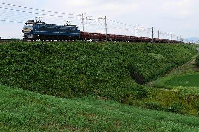 s-P1000228.jpg