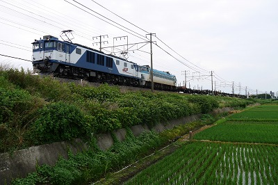 s-P1000245.jpg