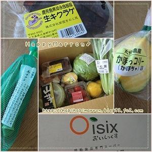 Oisix1.jpg
