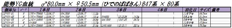 12能勢YGH1