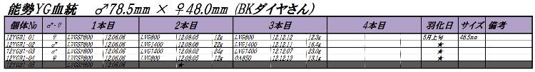 12能勢YGB1