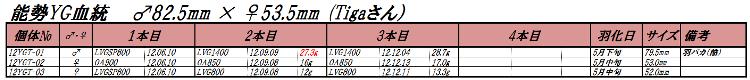 12能勢YGT